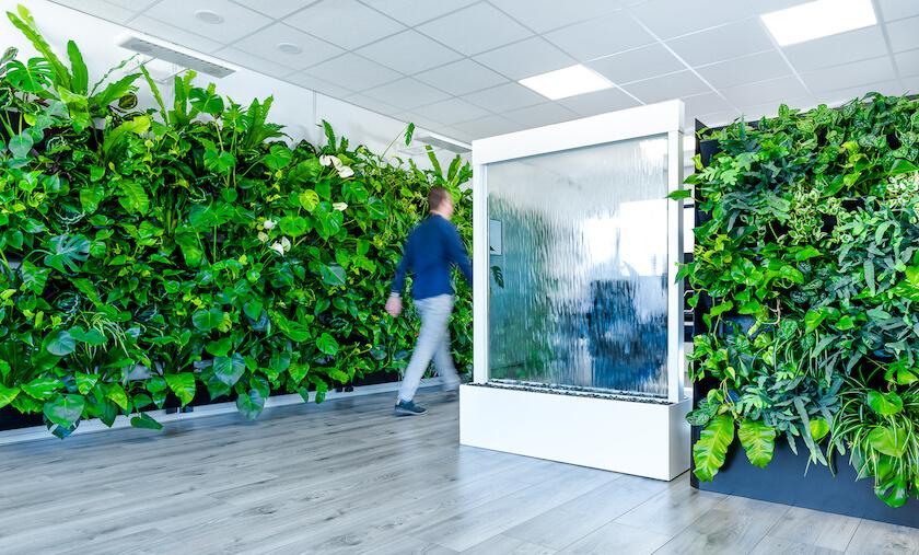 Klimaatbeheersing met behulp van interieurbeplanting